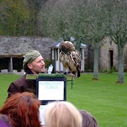 The falconry display at Dunrobin Castle is spectacular  and is a great day out. Just 25 miles from The Old Manse Bed and Breakfast near Tain